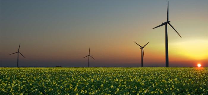 Energia limpa é a chave para combater a pobreza no mundo